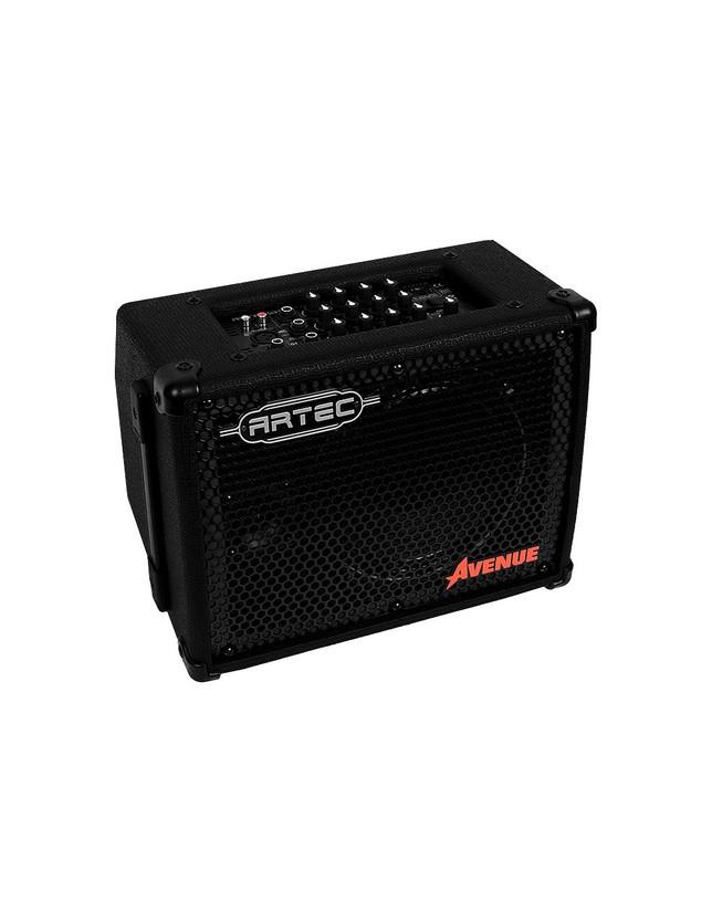 Avenue Amplificador Múltiple 20 Watts Con Fuente Incluida