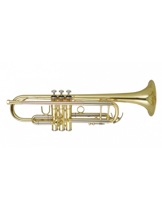 Dtr-250 Trompeta De Estudio En Bb