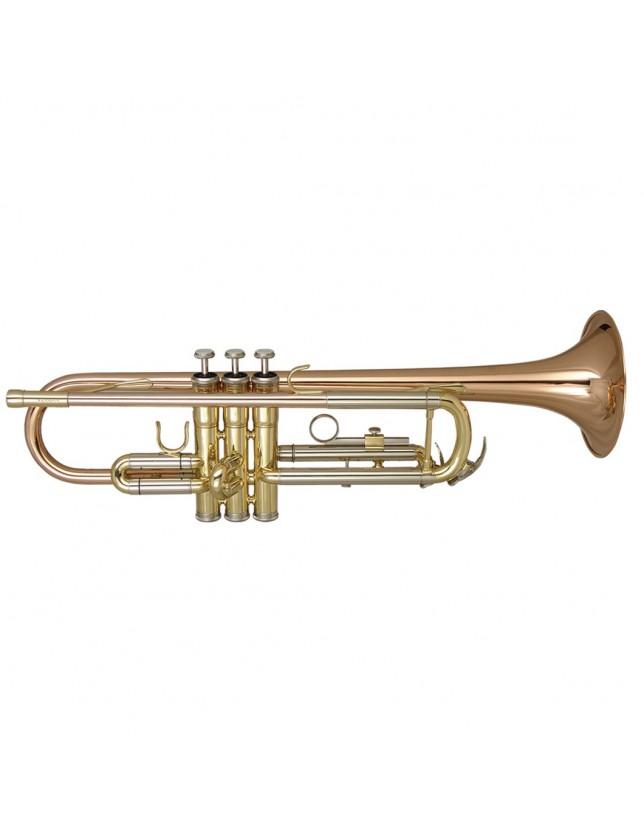 Dtr-400 Trompeta De Estudio Superior En Bb